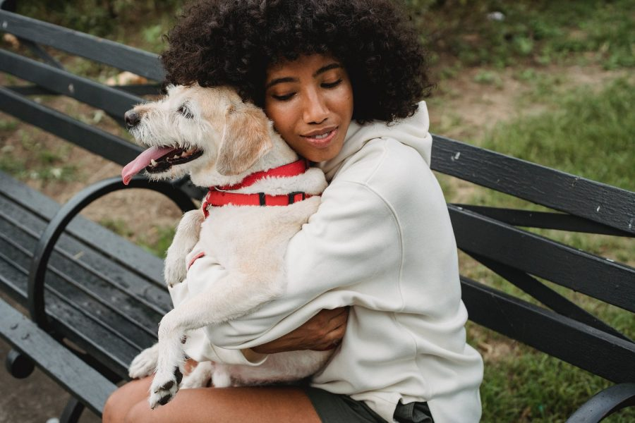 pets and mental health 1